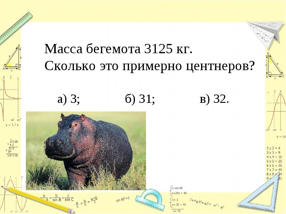 Масса бегемота 3125 кг. Сколько это примерно центнеров? а) 3; б) 31; в) 32.