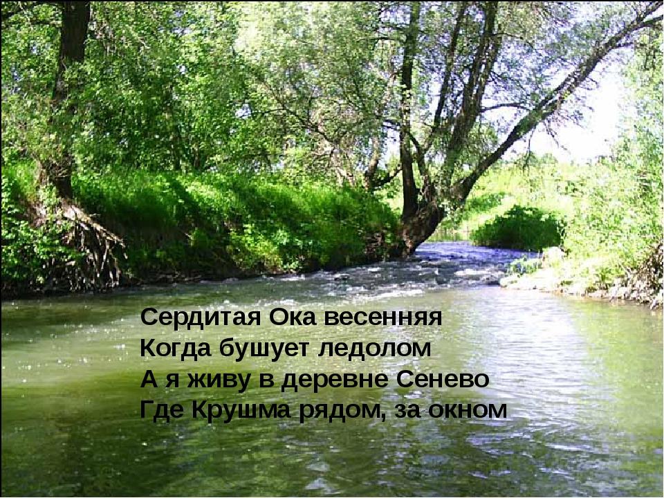Сердитая Ока весенняя Когда бушует ледолом А я живу в деревне Сенево Где Кру...