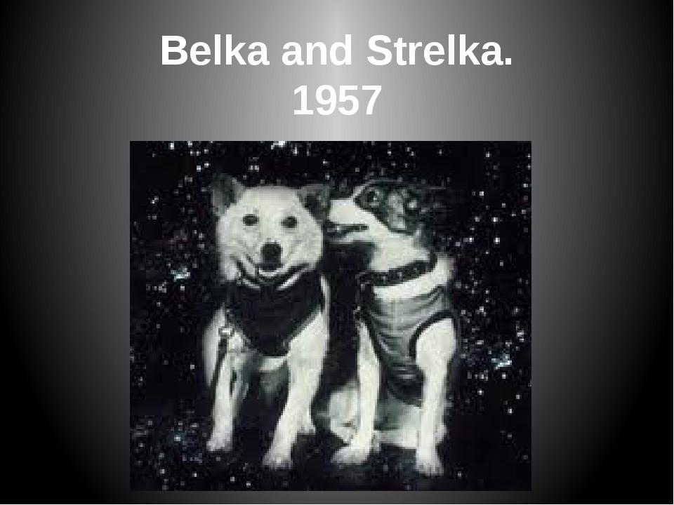 Belka and Strelka. 1957