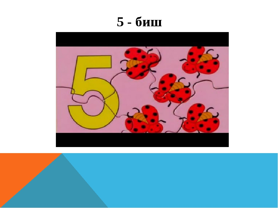 5 - биш