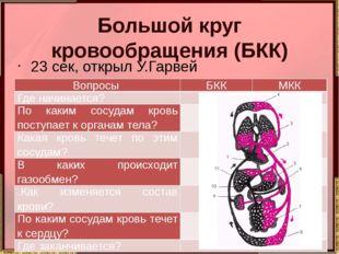 Большой круг кровообращения (БКК) 23 сек, открыл У.Гарвей Вопросы БКК МКК Где