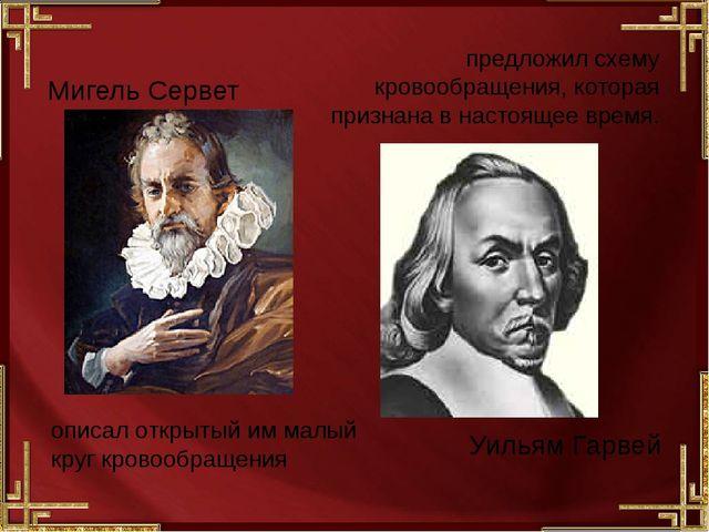 Мигель Сервет описал открытый им малый круг кровообращения Уильям Гарвей пр...