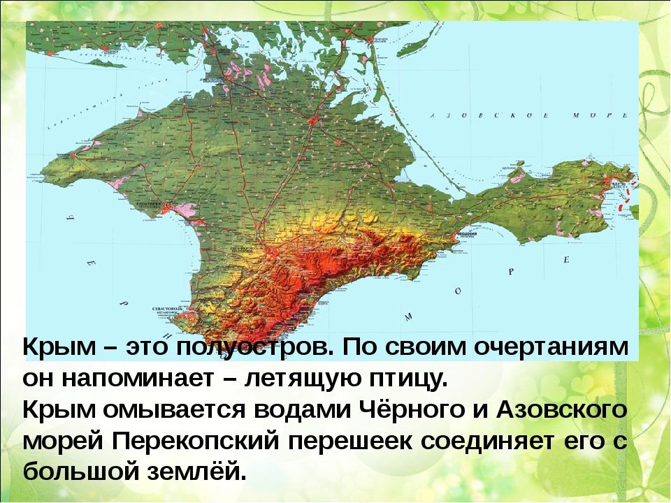 Крым – это полуостров. По своим очертаниям он напоминает – летящую птицу. Кры...