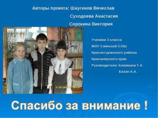 Авторы проекта: Шаугенов Вячеслав Суходоева Анастасия Сорокина Виктория Учени
