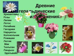 Древние геральдические изображения. Хризантемы Розы Лилии Лотос Репейник Гво
