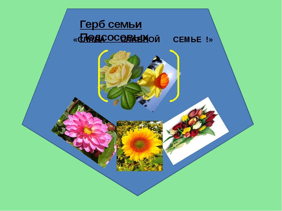 Герб семьи Подсосовых «СЛАВА СЛАВНОЙ СЕМЬЕ !»