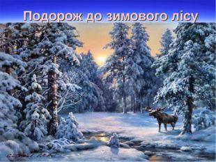Подорож до зимового лісу