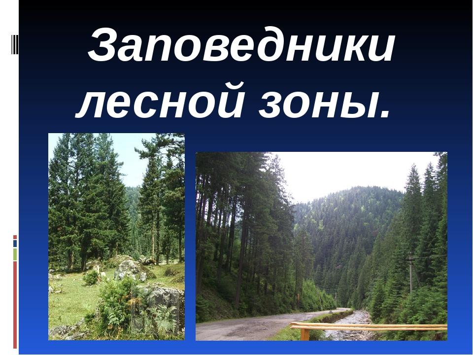Заповедники лесной зоны.