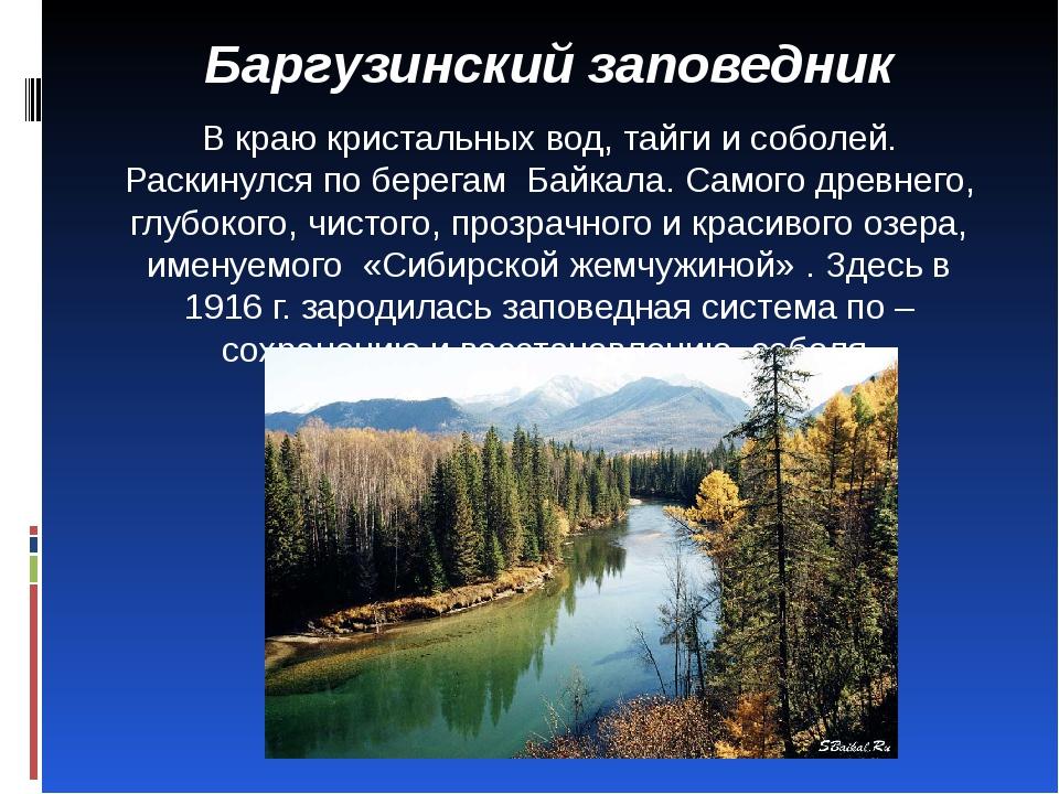 Баргузинский заповедник В краю кристальных вод, тайги и соболей. Раскинулся...