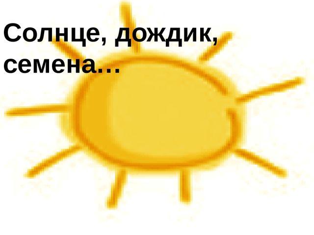 Солнце, дождик, семена…
