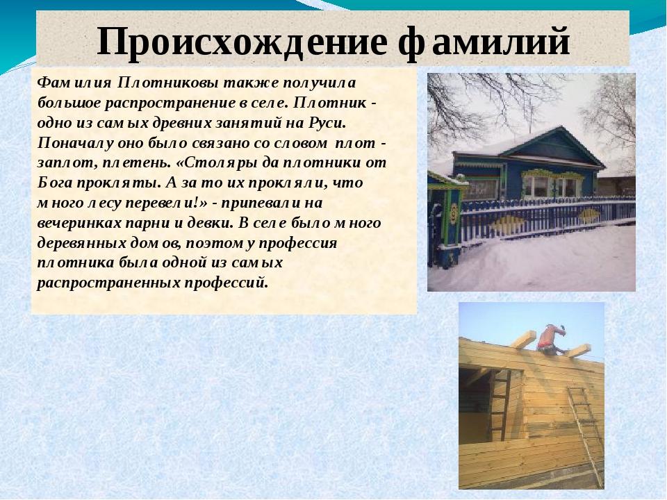 Происхождение фамилий Фамилия Плотниковы также получила большое распространен...