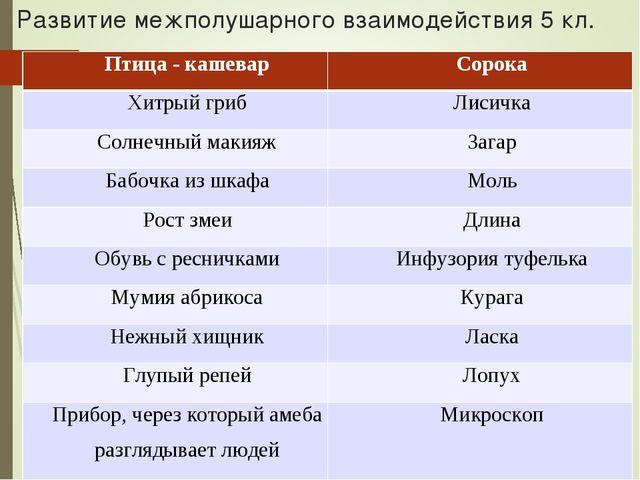 Развитие межполушарного взаимодействия 5 кл. Птица - кашеварСорока Хитрый гр...