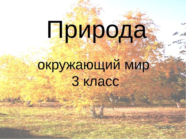 Природа окружающий мир 3 класс