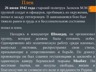 Казнь Посмертно ему было присвоено звание Героя Советского Союза. Зал для каз