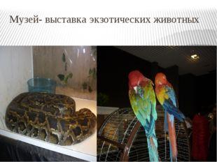 Музей- выставка экзотических животных