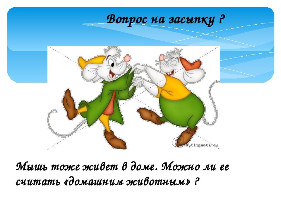 Вопрос на засыпку ? Мышь тоже живет в доме. Можно ли ее считать «домашним жив...