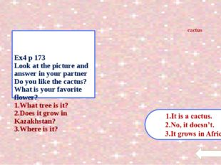 Ex4 p 173 Look at the picture and answer in your partner Do you like the cac