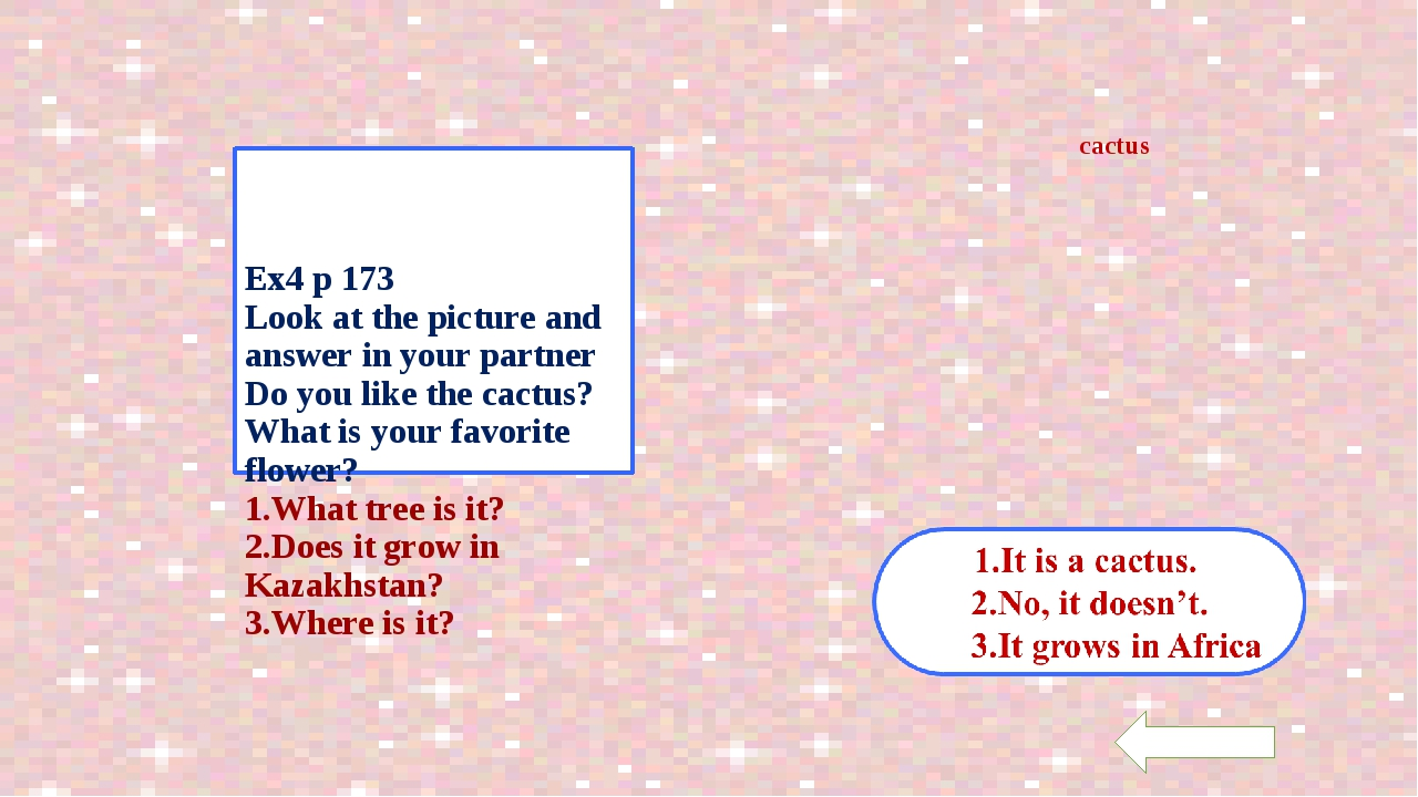 Ex4 p 173 Look at the picture and answer in your partner Do you like the cac...