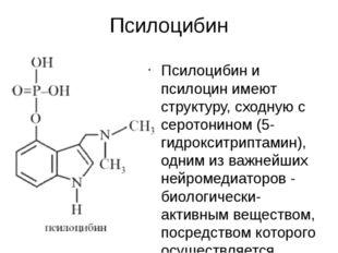 Псилоцибин Псилоцибин и псилоцин имеют структуру, сходную с серотонином (5-ги