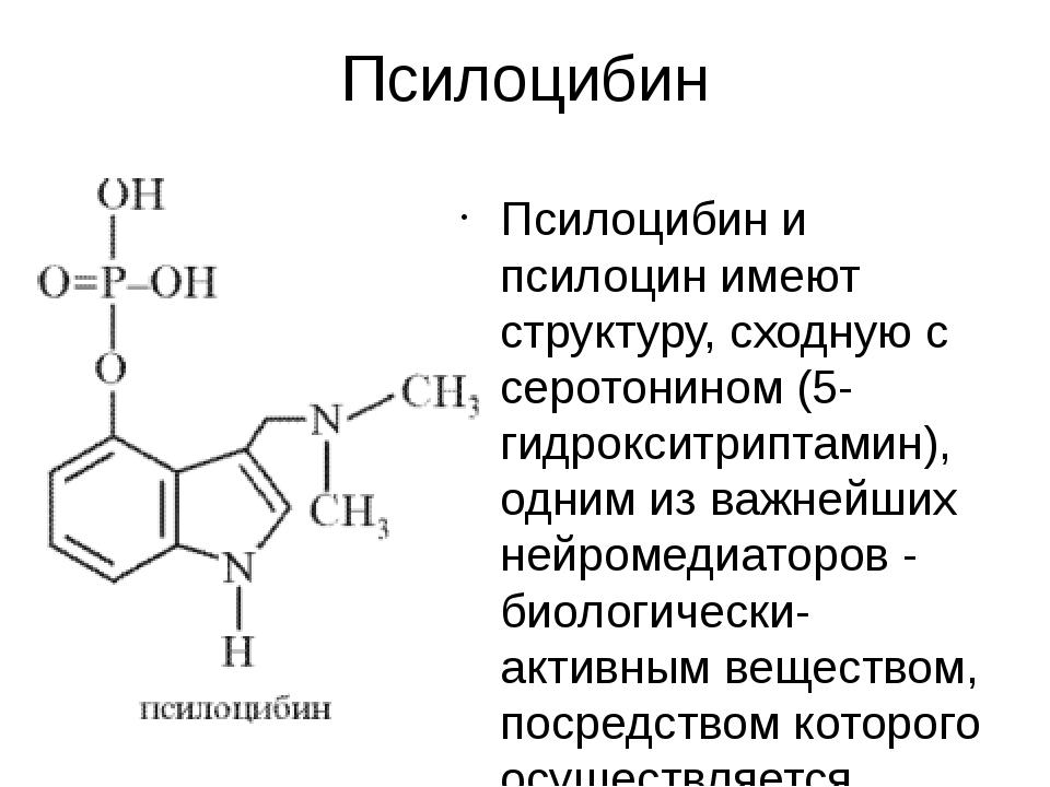 Псилоцибин Псилоцибин и псилоцин имеют структуру, сходную с серотонином (5-ги...