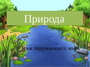 Природа Урок окружающего мира