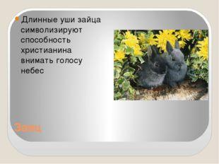 Заяц Длинные уши зайца символизируют способность христианина внимать голосу н