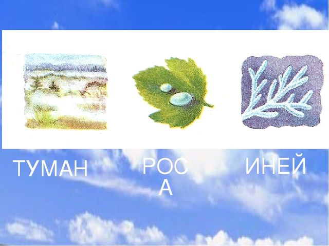 ТУМАН РОСА ИНЕЙ