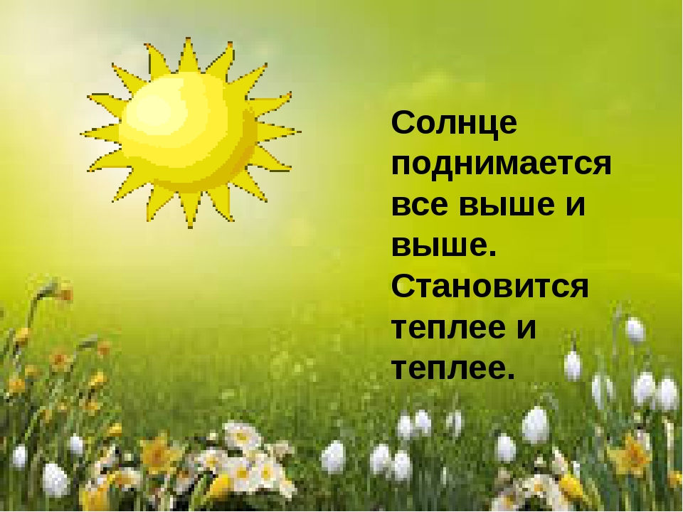 Солнце поднимается все выше и выше. Становится теплее и теплее.