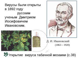 Открытие вируса табачной мозаики (с.38) Д. И. Ивановский (1863 – 1920) Вирусы