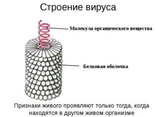 Строение вируса Молекула органического вещества Белковая оболочка Признаки жи