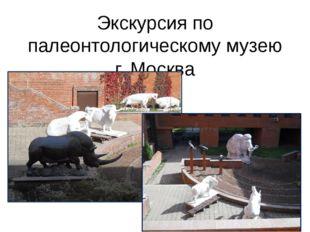 Экскурсия по палеонтологическому музею г. Москва