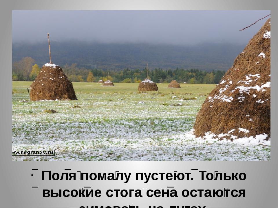 Поля́ пома́лу пусте́ют. То́лько высо́кие стога́ се́на остаю́тся зимова́ть на...