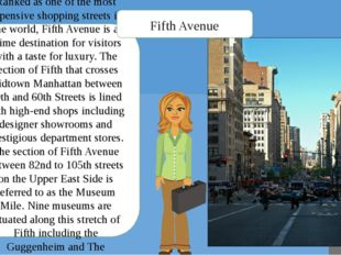 Ranked as one of the most expensive shopping streets in the world, Fifth Aven