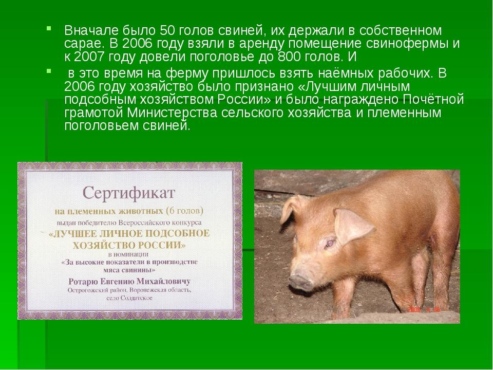 Вначале было 50 голов свиней, их держали в собственном сарае. В 2006 году взя...