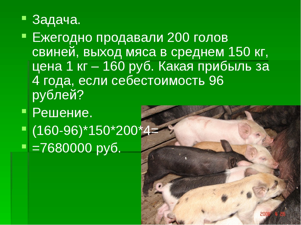Задача. Ежегодно продавали 200 голов свиней, выход мяса в среднем 150 кг, цен...