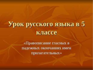 Урок русского языка в 5 классе «Правописание гласных в падежных окончаниях им