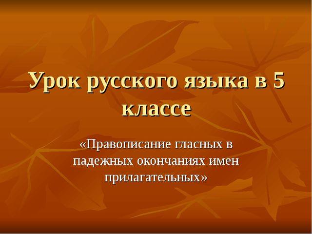 Урок русского языка в 5 классе «Правописание гласных в падежных окончаниях им...