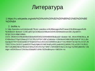 Литература 1.https://ru.wikipedia.org/wiki/%D0%A6%D0%B2%D0%B5%D1%82%D0%BE%D0%
