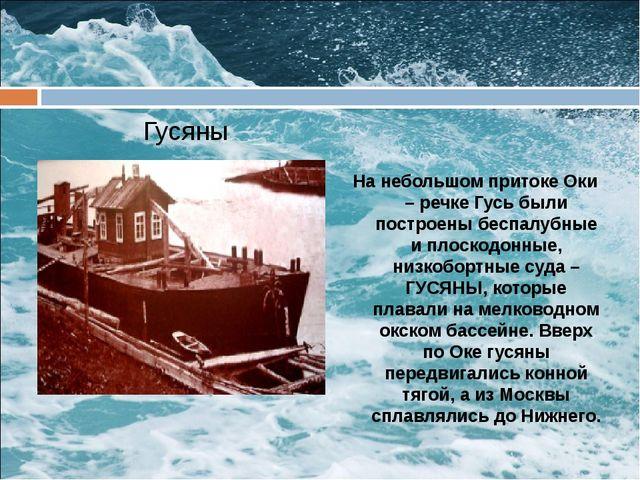 Гусяны На небольшом притоке Оки – речке Гусь были построены беспалубные и пл...