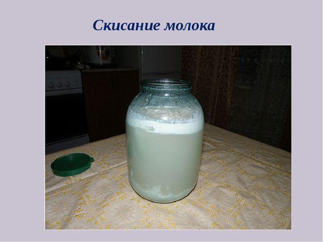 Скисание молока