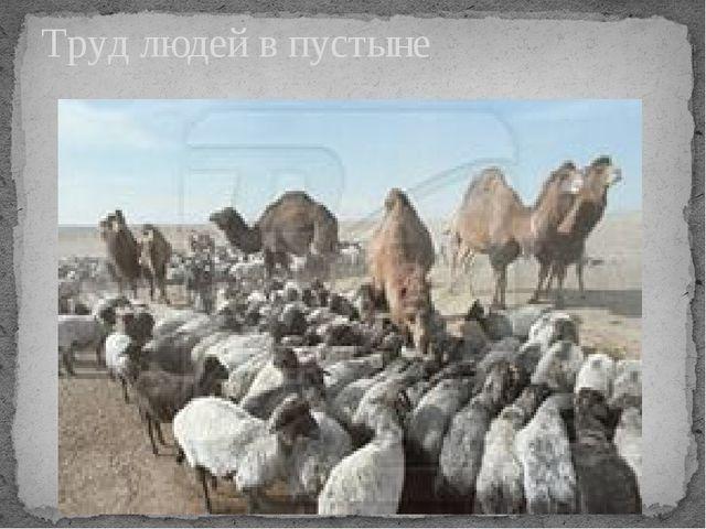 Труд людей в пустыне