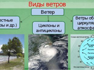 Ветер Местные (бризы и др.) Циклоны и антициклоны Ветры общей циркуляции атмо