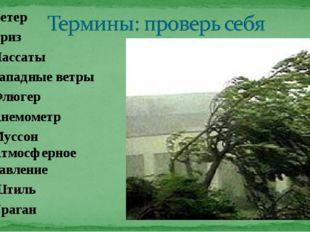Ветер Бриз Пассаты Западные ветры Флюгер Анемометр Муссон Атмосферное давлени
