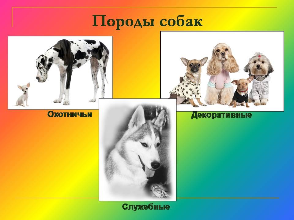 hello_html_11097041.jpg