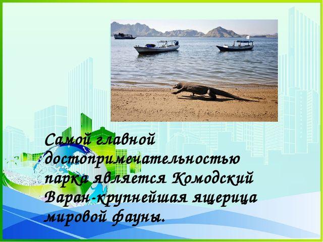 Самой главной достопримечательностью парка является Комодский Варан-крупнейш...