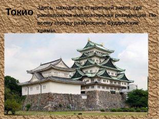 Токио Здесь находится старинный замок, где расположена императорская резиденц