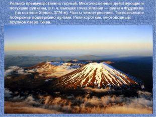 Рельеф преимущественно горный. Многочисленные действующие и потухшие вулканы,