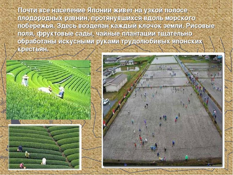 Почти все население Японии живет на узкой полосе плодородных равнин, протяну...