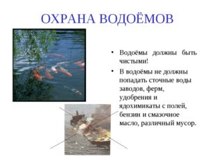 ОХРАНА ВОДОЁМОВ Водоёмы должны быть чистыми! В водоёмы не должны попадать сто