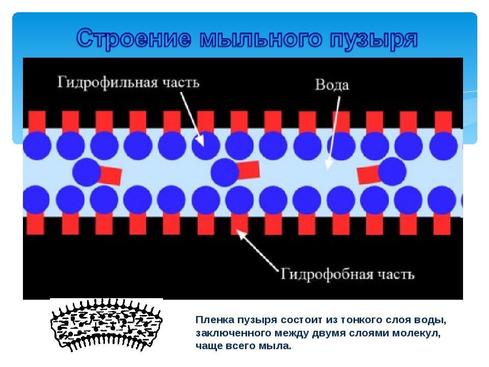 Пленка пузыря состоит из тонкого слоя воды, заключенного между двумя слоями м...
